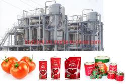 Produtos Best-Selling Completar as conservas de tomate a linha de processamento