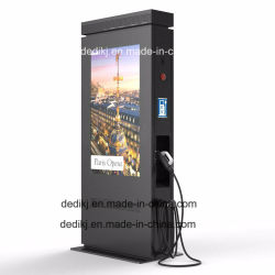 Dedi 55'' de la publicité de plein air l'écran LCD écran plat avec chargeur de voiture Kiosque