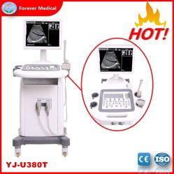 Venta caliente en B/N de equipos médicos Ecógrafo Carro (YJ-U380T)