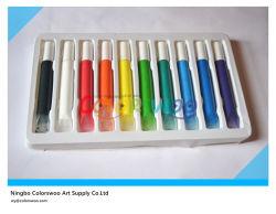 10*10.5ml Flat Nail Glass Paint per Students e Kids