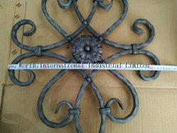花および葉を押す装飾的な庭ゲートの塀の錬鉄の芸術