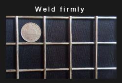 2X2, valla de alambre de acero inoxidable galvanizado Grid Panel de pared de metal 3D Los paneles de malla soldada de esgrima Rack