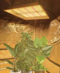 LEDが軽いLEDを育てる屋内プラントおよび温室のための正方形LEDの成長する軽い成長するランプはパネルLEDのプラントを育てるライトを育てる