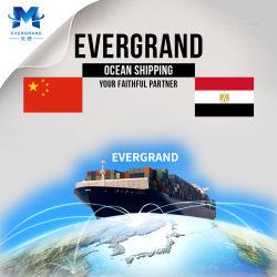Professional Services de transport de fret de la mer de Chine à l'Égypte/Alexandria Old Port/Le Caire
