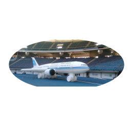 Aufblasbares Flugzeug, aufblasbares bekanntmachendes Flugzeug-Spielzeug
