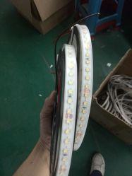 5050 RGBW SMD LED RVB de bande de couleur blanche de lumière LED 5m 300 60LED/M étanche 24V DC.