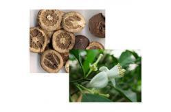 Organischer Frucht-Puder-Zitrusfrucht Aurantium Auszug-natürliches Neohesperidin