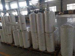 Espulsore di strato biodegradabile di PLA in rullo per la coltelleria a gettare ecologica
