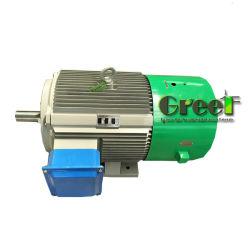 700kw 200rpm RPM basso alternatore senza spazzola di CA di 3 fasi, generatore a magnete permanente, dinamo di alta efficienza, Aerogenerator magnetico