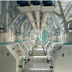5-200 T/D Commercial granturco/mais fresatrice a prezzo basso