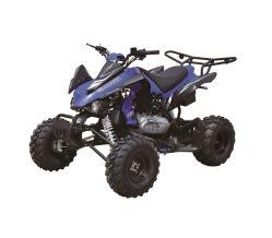 250cc Quad Bike, Racing ATV EEC Approval avec 10inch Wheels