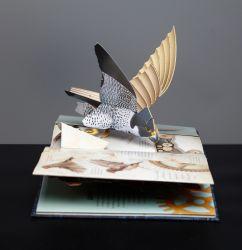 Capa dura com novo design 3D AS CRIANÇAS Pop-up a impressão de livros de história