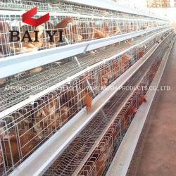 Galvanisierte Huhn-Bauernhof-Schicht-Rahmen für Verkauf in Zimbabwe