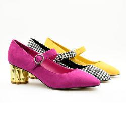 Il job aguzzo dell'ufficio di marchio delle calzature su ordinazione delle signore pompa i pattini dell'alto tallone delle donne