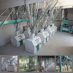 Macchina di macinazione di farina del frumento per produrre farina con il migliore prezzo di fabbrica