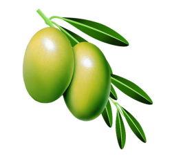 Oleuropeina verde oliva CAS no. 32619-42-4&#160 dell'estratto del foglio;