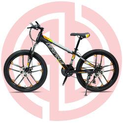 マウンテンバイクを競争させている高炭素の鋼鉄涼しいスポーツの自転車MTBの人