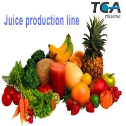 Fruchtsaft-aufbereitendes Geräten-/Erdbeere-Blaubeere-Himbeere-Saft-Produktions-Maschine
