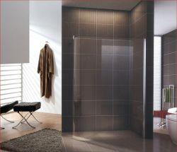 Diseño moderno cuarto de baño mampara de ducha Simple (CK-8063)