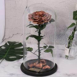Melhor Dia dos Namorados dons de várias cores preservados flor rosa Real eterna na cúpula de vidro