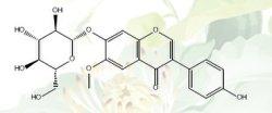 Glycitin CAS 40246-10-4 98% door HPLC