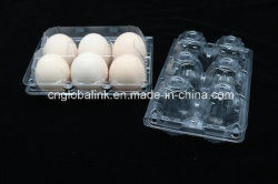 6 Dienblad 6 van het Ei van cellen Plastic Dienblad van het Ei van Gaten het Grote
