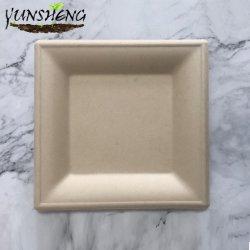 """Vierkante 6"""" X 6"""" biologisch afbreekbare Bagasse platen - Wit Eco Vriendelijke microgolf veilige suikerriet composteerbaar 100% natuurlijk en plastic vrij Plaat"""