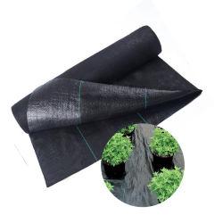 Mat van het Onkruid van pp de Plastic Zwarte Anti/Anti de Gras Geweven Doek van de Stof