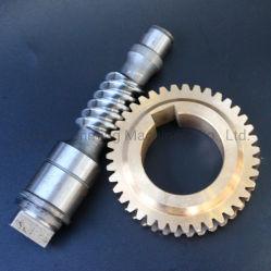 Engrenage cylindrique OEM ver marin engrenage de transmission de boîte de vitesses