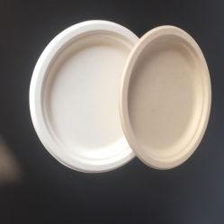 퇴비안정 일회용 슈가로캔 또는 대나무 과육 종이 접시, 석식/맞춤형 둥근 디저트 종이 판/타원형 흰색 과일 종이 판