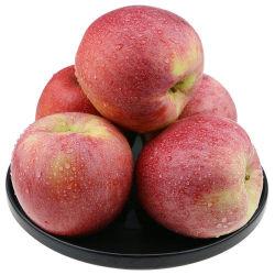 Bolsa de papel rojo Qinguan frutas manzanas