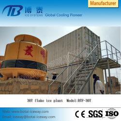 Beweglicher Entwurf 5t/10t/20t/30t/50t/100t Containerize Flocken-Speiseeiszubereitung-Pflanze