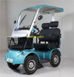 Adulte de la mobilité électrique 4 roues de loisirs en tuk tuk 60V500w avec la CE et le toit
