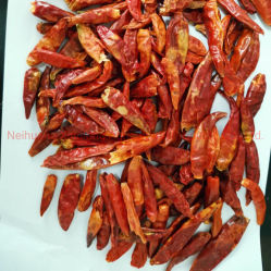 Peperoncini rossi rossi asciutti bassi del grado c di prezzi terzo