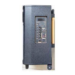 Parti ed accessori esterni senza fili promozionali di legno dell'altoparlante della batteria di cavo di pollice 100W 12V 5ah del Governo Qx-1031 10