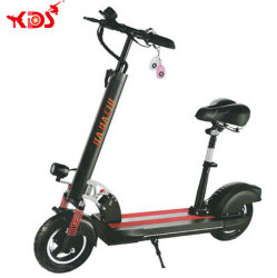 Heißer Verkauf 500W 10inch Wheel Faltbarer erwachsener elektrischer Roller