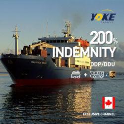 国際輸送物流海上輸送貨物輸送エクスプレスベスト輸送エージェント 中国からカナダへのサービス
