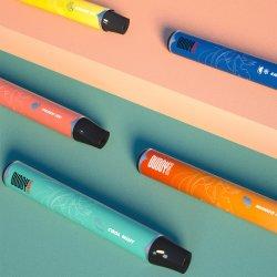 2021 cinq étoiles Craft personnalisé E cigarette 1000puffs stylo à cassette jetable