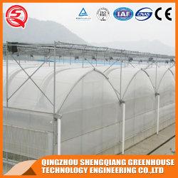 Angemessener Preis-wasserdichtes Wasserkulturgewächshaus Plastik wachsen Zelt