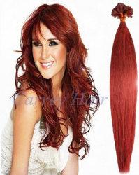 2013 горячая продажа волос (PBHE Pre-Bonded3-18-05)