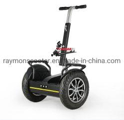 Motorino elettrico della rotella elettrica del vagone per il trasporto dei lingotti 2 della spiaggia 2000W con la maniglia