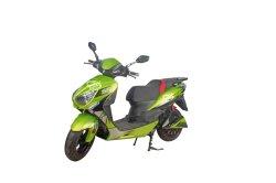 leistungsfähiger elektrischer Roller des Motorrad-1000W/elektrisches Motorrad-Fahrrad (F1-3)