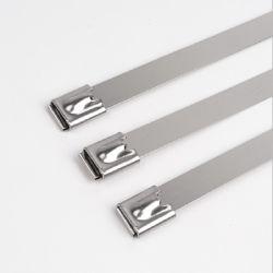 고품질 스테인리스 스틸 사다리 케이블 타이 4.6 * 900