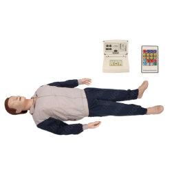 H-CPR300s-G 의료 과학 심폐소생술 응급의료기술 교육 마네킹