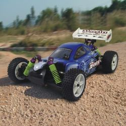 RC Car - 제 1/10 Scale 4wd에 의하여 건전지 강화되는 off-Road Buggy - Booster (10070)