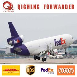 شحن سريع لشينزين الزجاج TNT Courier Express باب الشحن إلى خدمة الأبواب من الصين إلى الإمارات العربية المتحدة