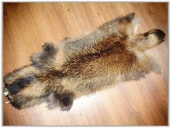 Waschbär-Pelz-Häute in der natürlichen Brown-Farbe von den Leoskin Pelzen