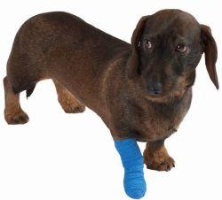 Литая деталь ортопедических ленту для домашних животных