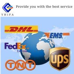 DHL, TNT, UPS, Federal- ExpressExpressdienst/Lufttransport-Haus-Hausverschiffen von China nach Großbritannien