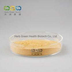 人の健康の草のエキスのための緑のコーヒー豆の粉